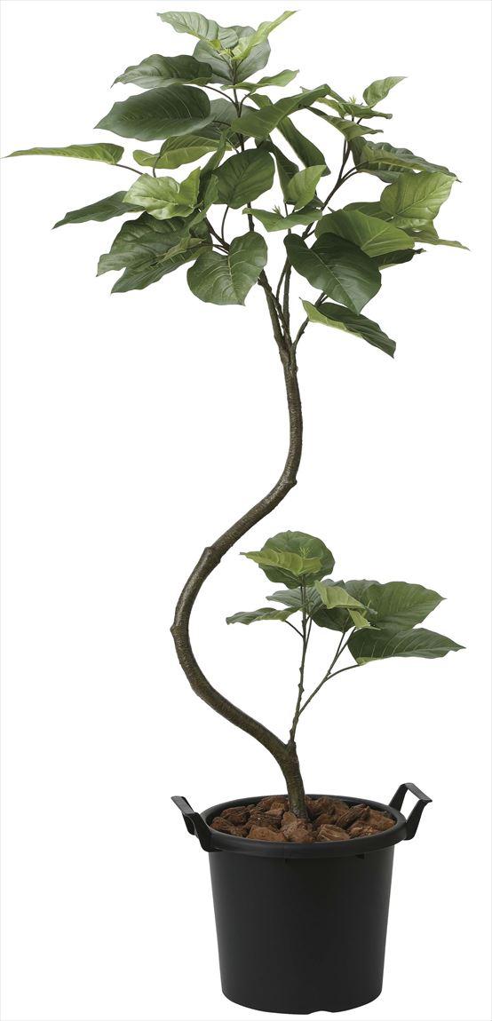 光触媒 光の楽園 インテリアウンベラータ 高さ 1.65m 【インテリアグリーン 大型 人工観葉植物】 (2026a250)