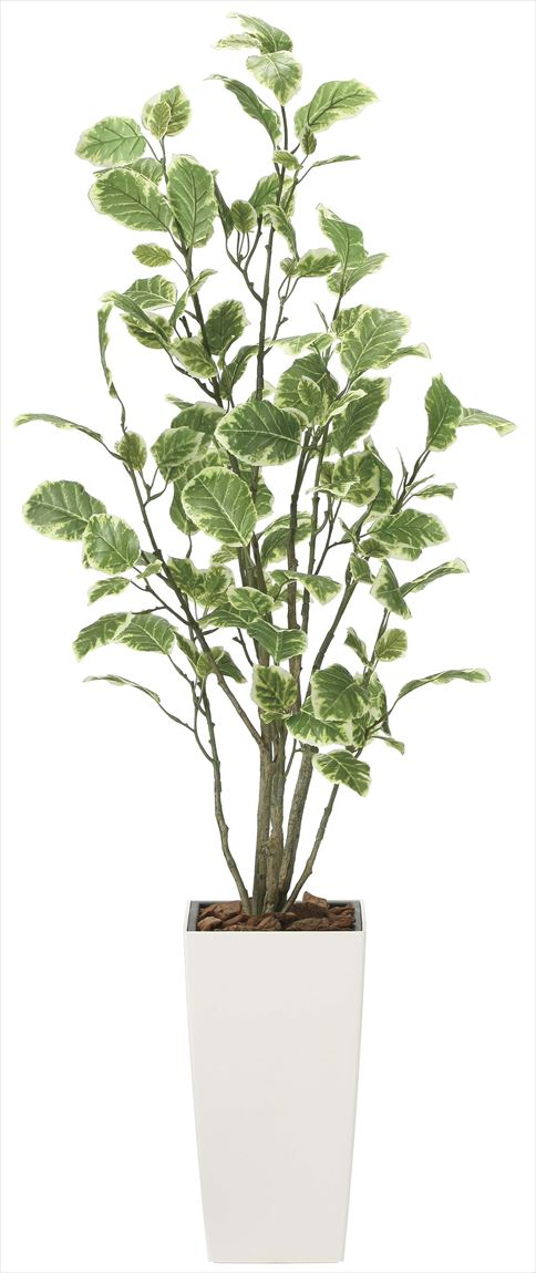 光触媒 光の楽園 ポリシャス 高さ 1.3m 【インテリアグリーン 人工観葉植物】 (2030a200)