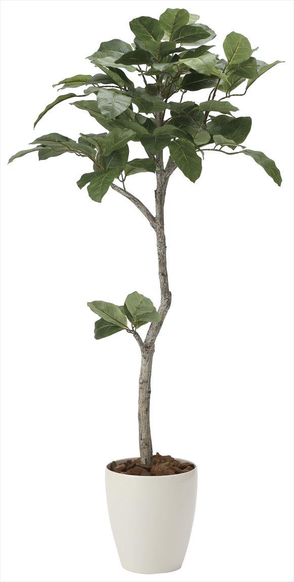 光触媒 光の楽園 ベンガル菩提樹 高さ 1.35m 【インテリアグリーン 人工観葉植物】 (2031a250)