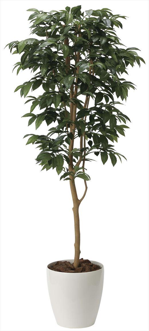 光触媒 光の楽園 アルデシア(万両) 高さ 1.6m 【インテリアグリーン 大型 人工観葉植物】 (2034a300)