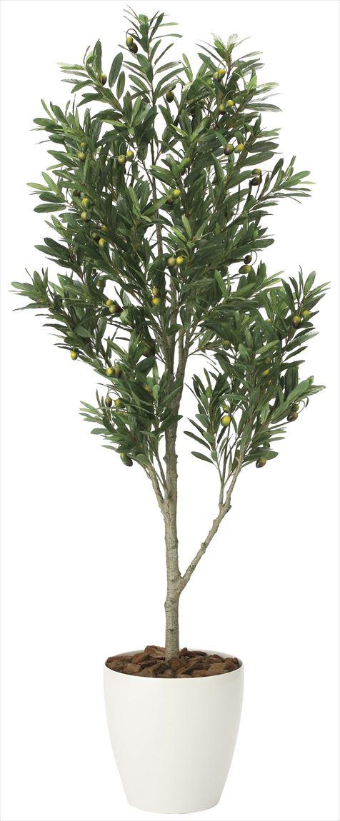光触媒 光の楽園 オリーブツリー 高さ 1.65m 【インテリアグリーン 大型 人工観葉植物】 (2096a400)