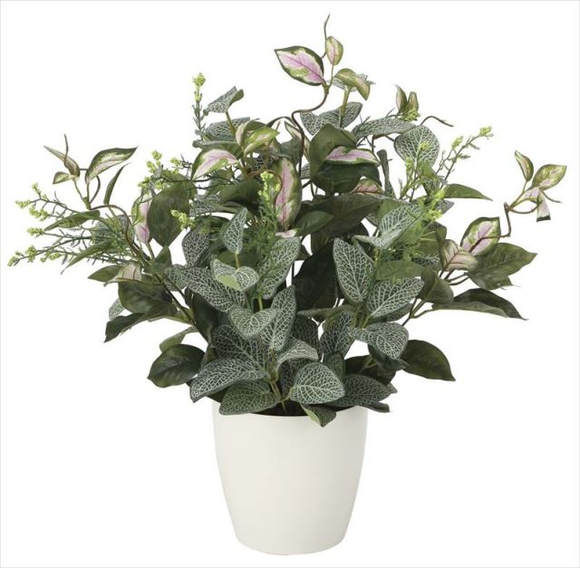 光触媒 光の楽園 ミックスフィットニア 【インテリアグリーン 人工観葉植物】 (2101a60)