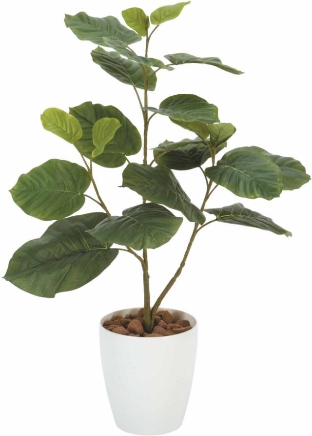 光触媒 光の楽園ウンベラータ 高さ 80cm【インテリアグリーン 人工観葉植物】(211a100)