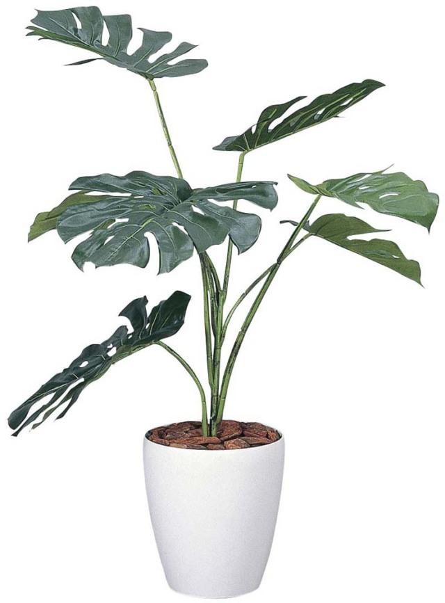光触媒 光の楽園 モンステラ 高さ 90cm 【インテリアグリーン 人工観葉植物】 (213g120)