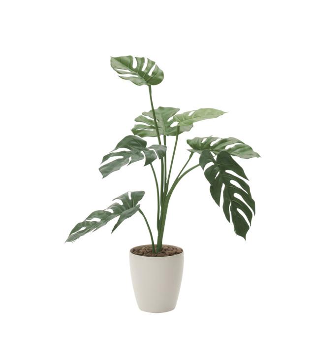 光触媒 光の楽園 モンステラ 高さ 75cm 【インテリアグリーン 人工観葉植物】 (225g100)