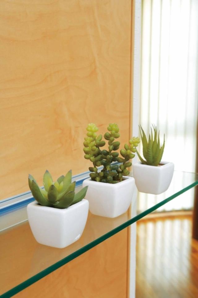 光触媒 光の楽園多肉植物3点セット【インテリアグリーン 人工観葉植物】(231b35/231a30)