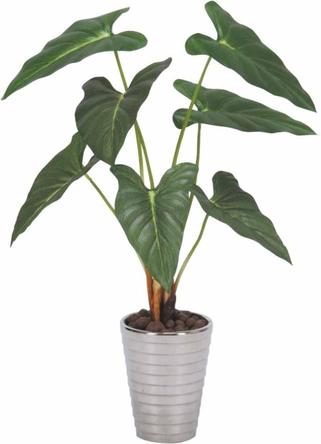 光触媒 光の楽園フィロデンドロン【インテリアグリーン 人工観葉植物】(243a50)