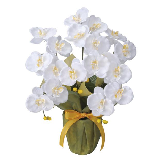 光触媒 光の楽園ミディ胡蝶蘭W【アートフラワー 造花 】(25a35)