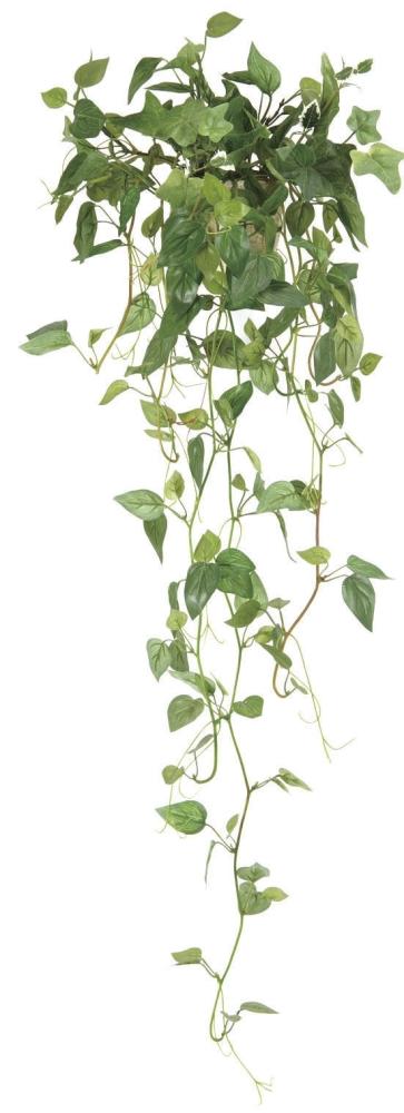 光触媒 光の楽園壁掛フィロ【インテリアグリーン 人工観葉植物】(272b35/272a30)