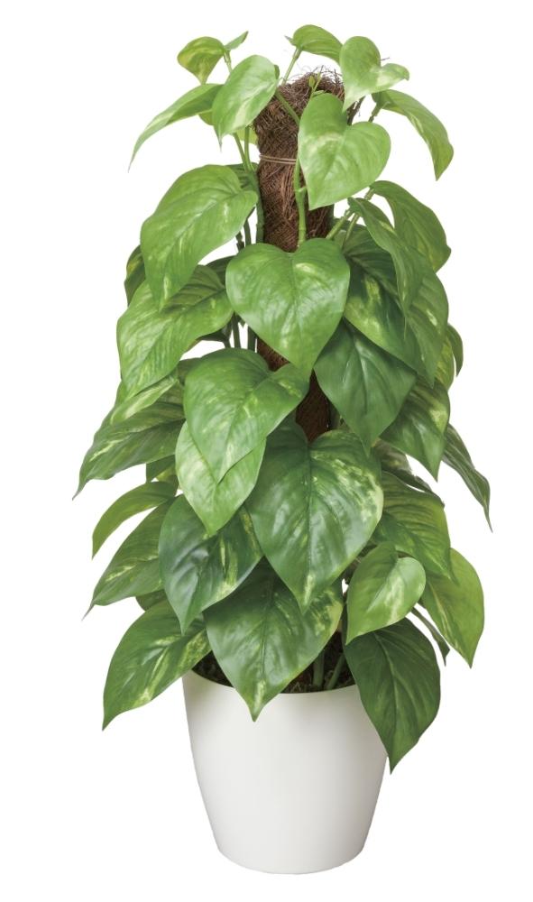 光触媒 光の楽園フレッシュポールポトス【インテリアグリーン 人工観葉植物】(382a50)