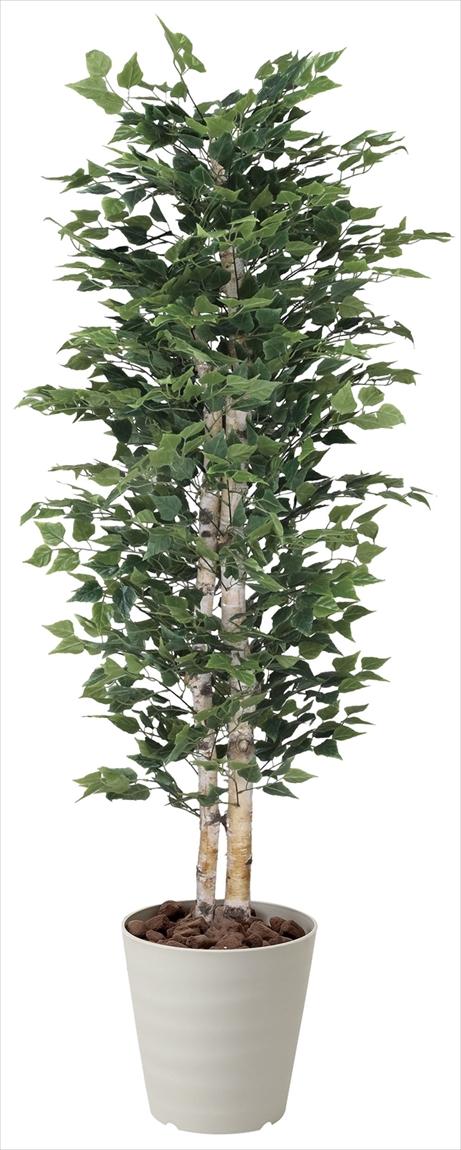 光触媒 光の楽園白樺 高さ 1.8m【インテリアグリーン 大型 人工観葉植物】(402f750)