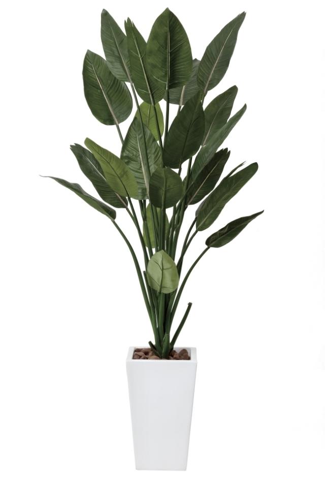 光触媒 光の楽園ストレチアW 高さ 1.6m【インテリアグリーン 大型 人工観葉植物】(409a500)