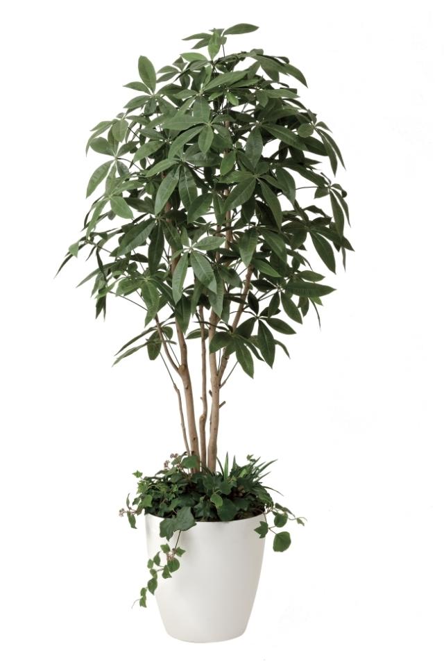 光触媒 光の楽園パキラ(植栽付) 高さ 1.8m【インテリアグリーン 大型 人工観葉植物】(412f500)