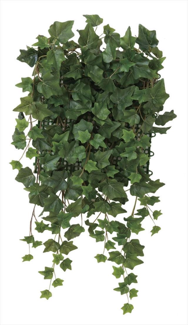光触媒 光の楽園壁面緑化アイビー【インテリアグリーン 人工観葉植物】(442c70)