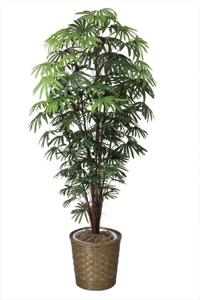 光触媒 光の楽園シュロチク 高さ 1.8m【インテリアグリーン 大型 人工観葉植物】(501f570)