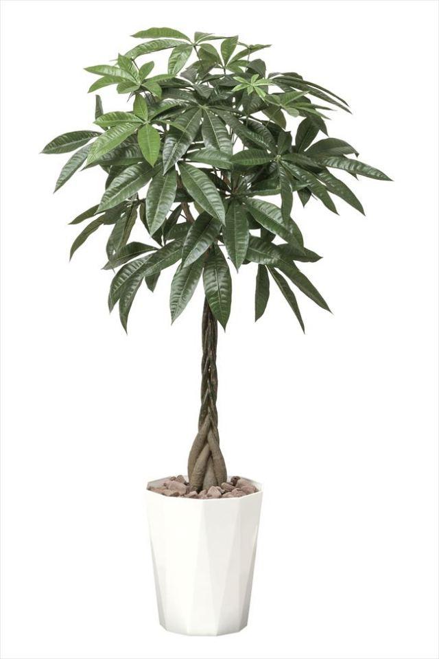 光触媒 光の楽園パキラ1.25m【インテリアグリーン 人工観葉植物】(510e280)