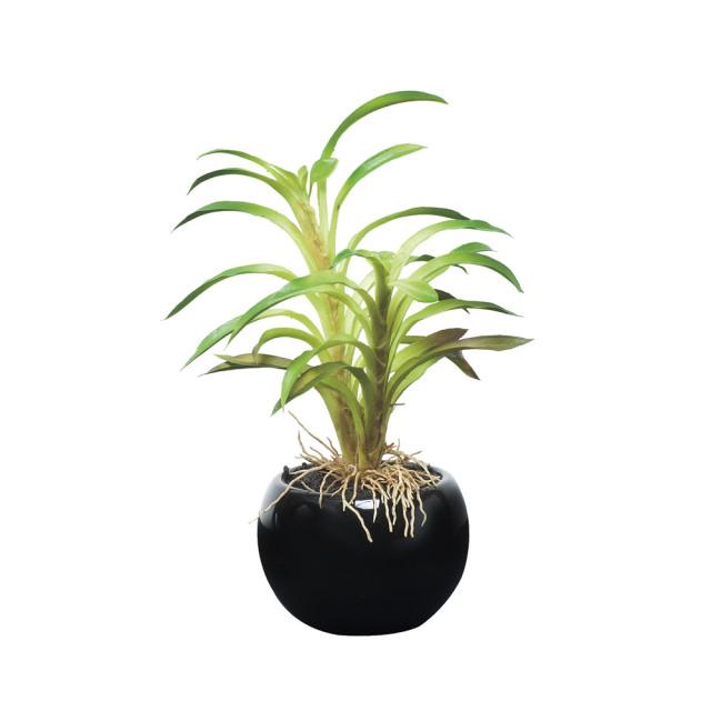 光触媒 光の楽園カクタスインポット【インテリアグリーン 人工観葉植物】(521a25)
