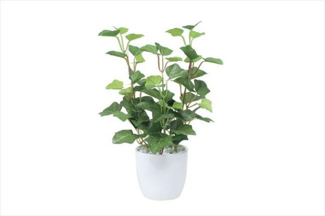 光触媒 光の楽園ミニアイビーポット【インテリアグリーン 人工観葉植物】(524a25)