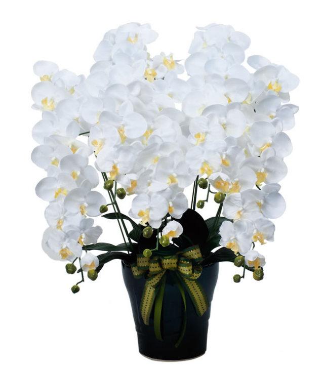 光触媒 光の楽園ロイヤル胡蝶蘭5本立W【アートフラワー 造花 】(※ラッピング不可)(532a300)