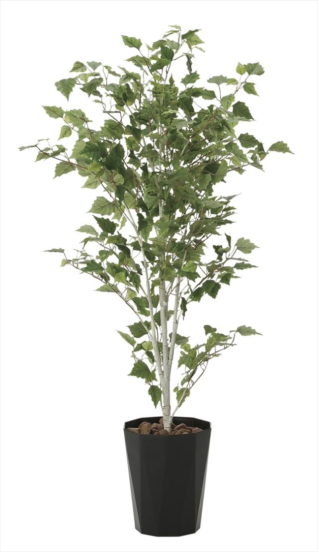 光触媒 光の楽園白樺1.4m【インテリアグリーン 人工観葉植物】(607a270)