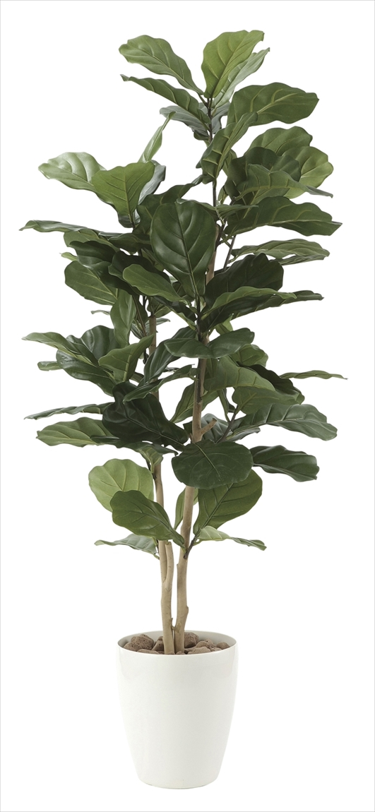 光触媒 光の楽園カシワバゴム1.35m【インテリアグリーン 人工観葉植物】(609e230)