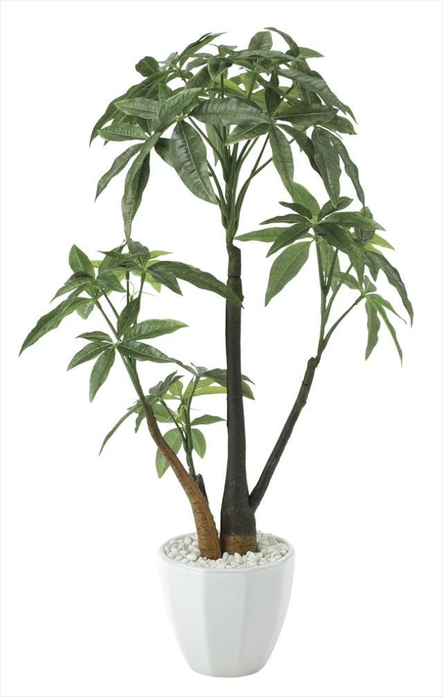 光触媒 光の楽園パキラポットL【インテリアグリーン 人工観葉植物】(629a85)