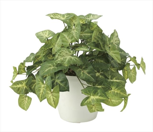 光触媒 光の楽園フレッシュカラ-ジュ-ム【インテリアグリーン 人工観葉植物】(643a50)