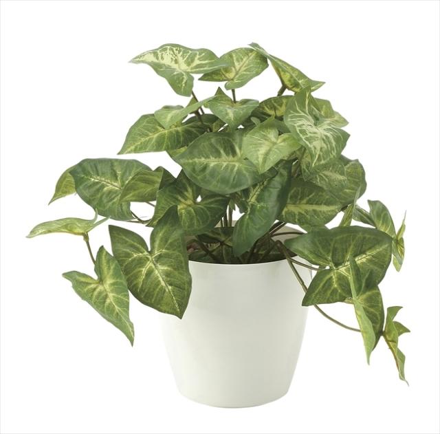 光触媒 光の楽園フレッシュカラ-ジュ-ムS【インテリアグリーン 人工観葉植物】(644a35)