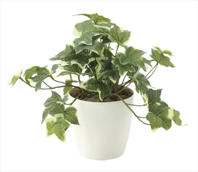 光触媒 光の楽園フレッシュ斑入りアイビ-S【インテリアグリーン 人工観葉植物】(646a35)