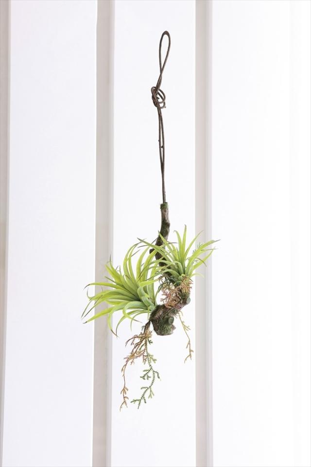 光触媒 光の楽園エアープランツW【インテリアグリーン 人工観葉植物】(647a48)