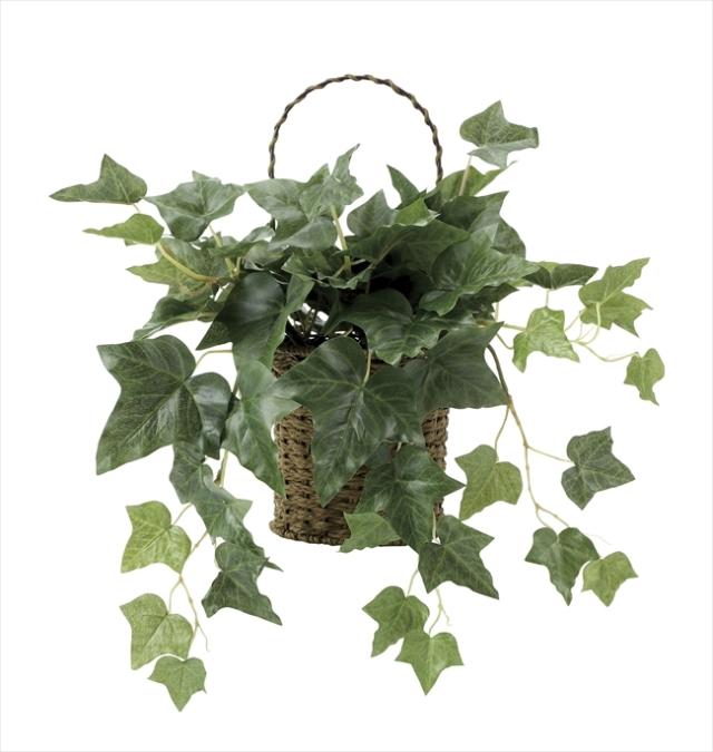 光触媒 光の楽園壁掛アイビー【インテリアグリーン 人工観葉植物】(650a50)