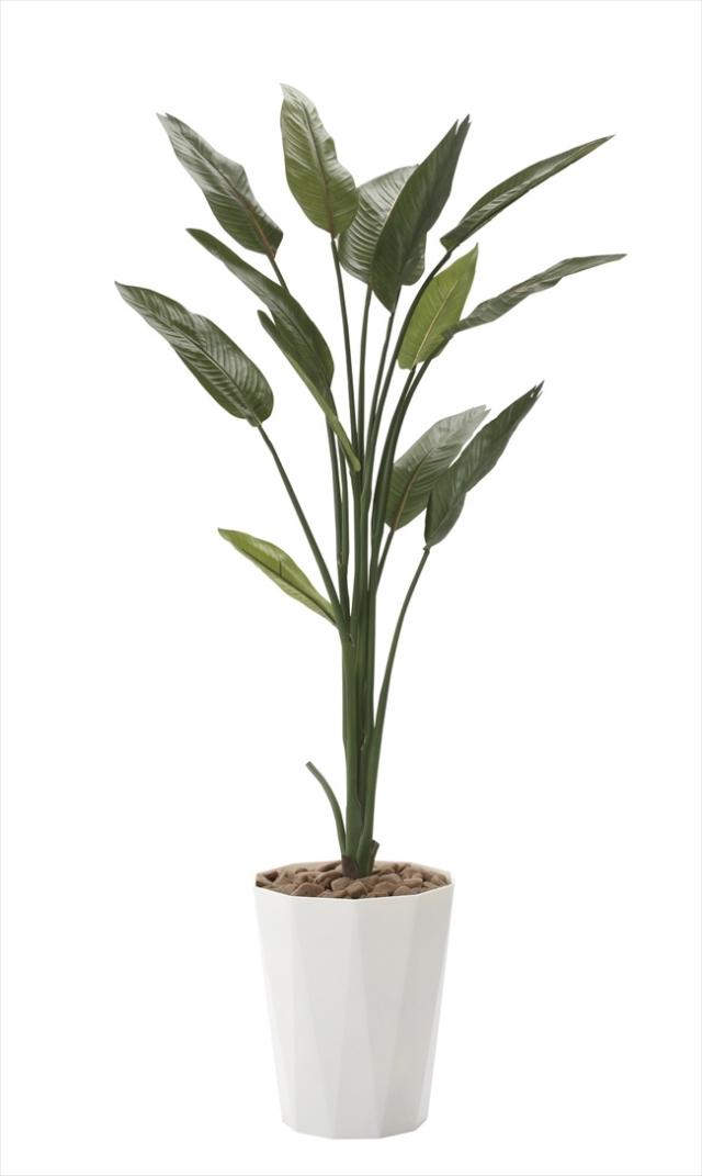 光触媒 光の楽園ストレチア 高さ 1.6m【インテリアグリーン 大型 人工観葉植物】(729a250)