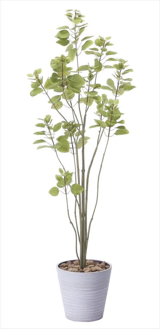 光触媒 光の楽園ブランチツリー 高さ 1.7m【インテリアグリーン 大型 人工観葉植物】(813a250)