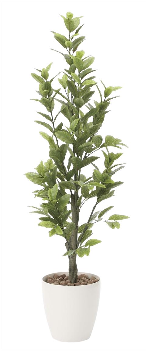 光触媒 光の楽園レモン 高さ 1.6m【インテリアグリーン 大型 人工観葉植物】(816a300)