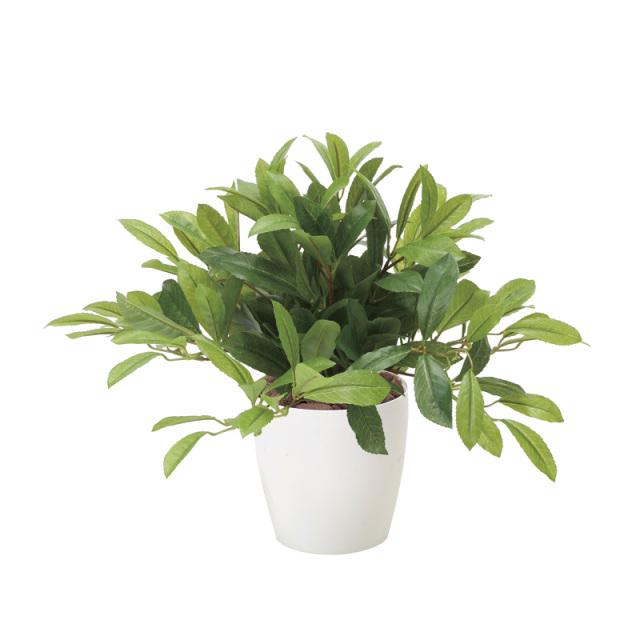 光触媒 光の楽園 ローレル 【インテリアグリーン 人工観葉植物】 (828g80)