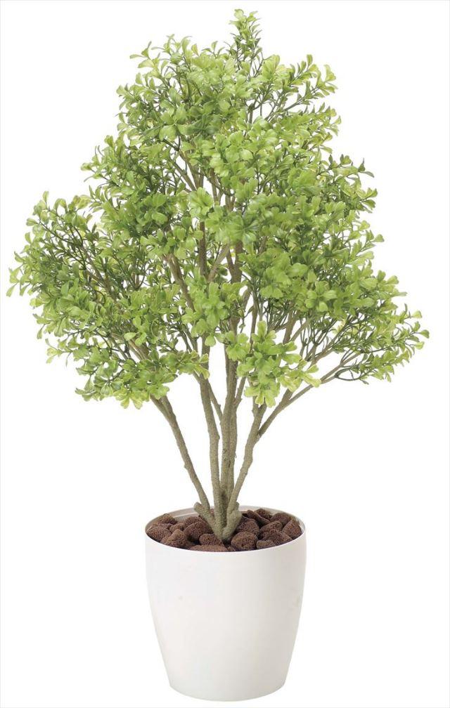 光触媒 光の楽園 ボックスウッド 高さ 70cm 【インテリアグリーン 人工観葉植物】 (831g95)