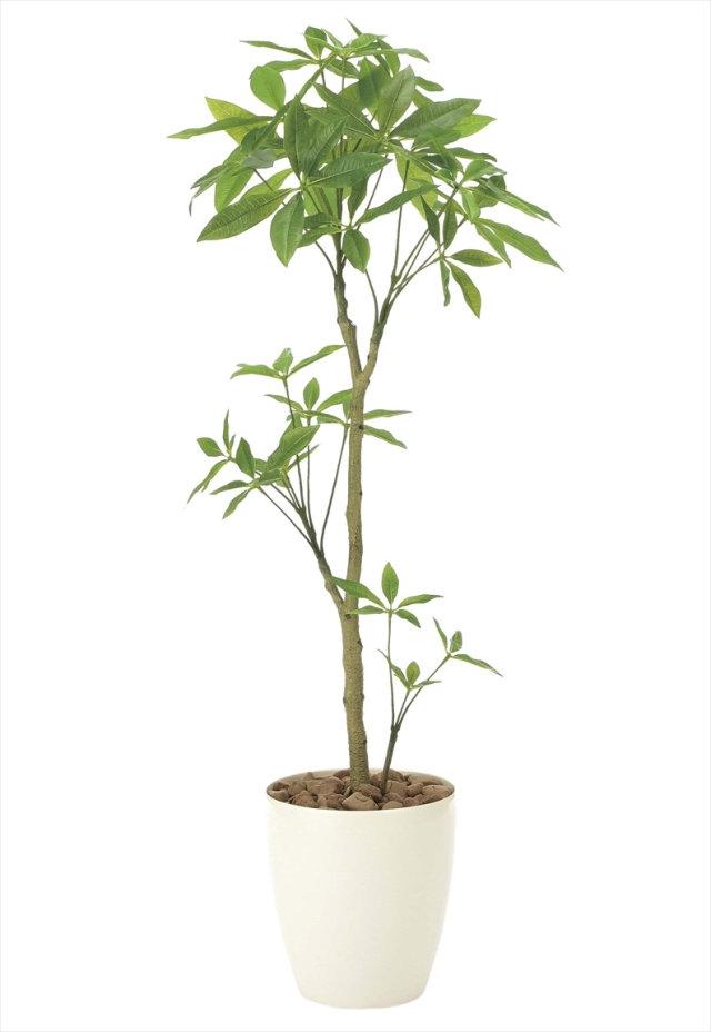 光触媒 光の楽園パキラ1.3m【インテリアグリーン 人工観葉植物】(908a250)