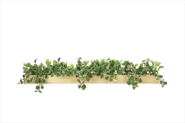 光触媒 光の楽園ウッドボックスSL【インテリアグリーン 人工観葉植物】(※ラッピング不可)(938a150)