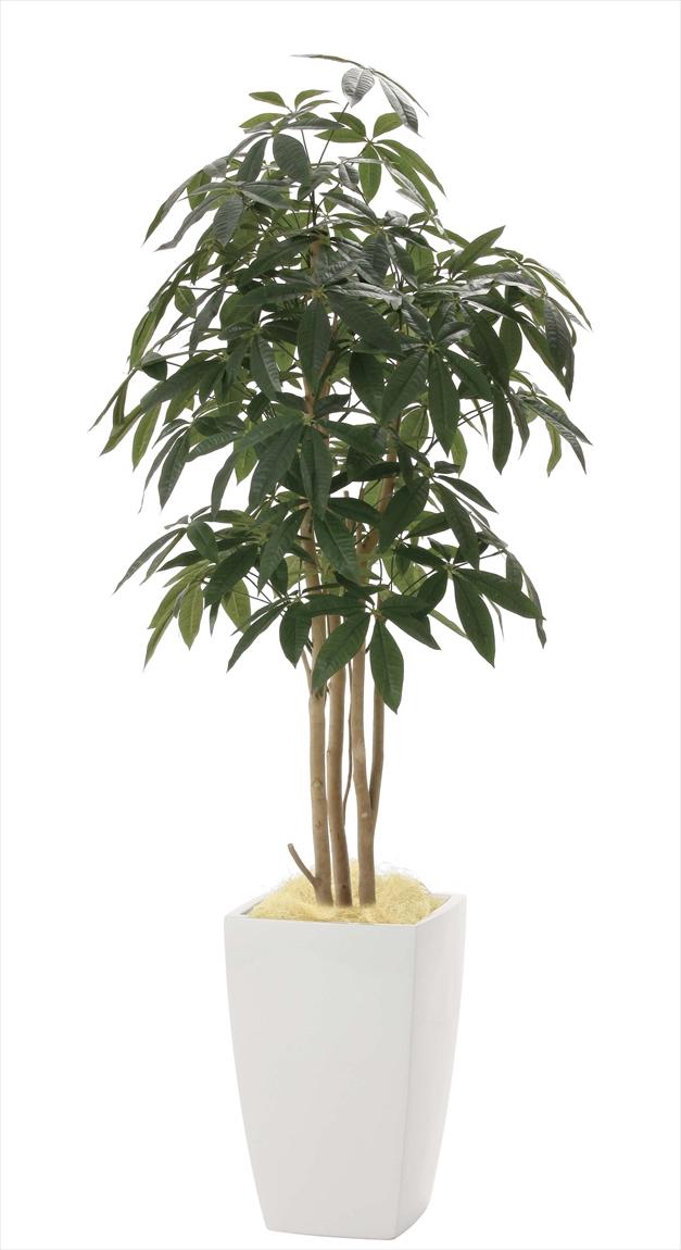 光触媒 光の楽園アーバンパキラ 高さ 1.8m【インテリアグリーン 大型 人工観葉植物】(941a600)