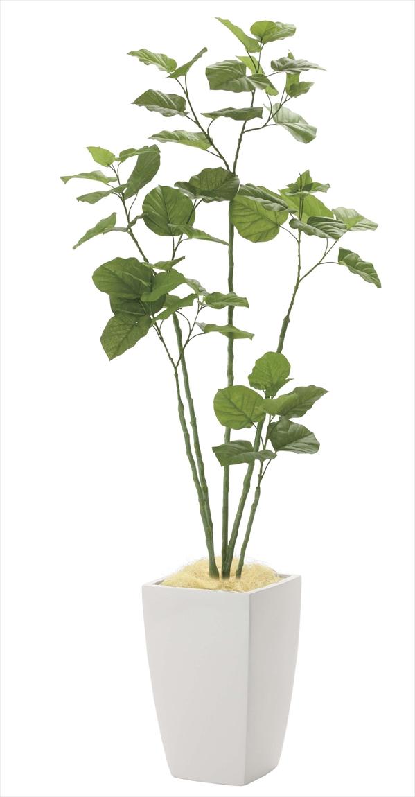 光触媒 光の楽園アーバンブランチウンベラータ 高さ 1.8m【インテリアグリーン 大型 人工観葉植物】(943a650)