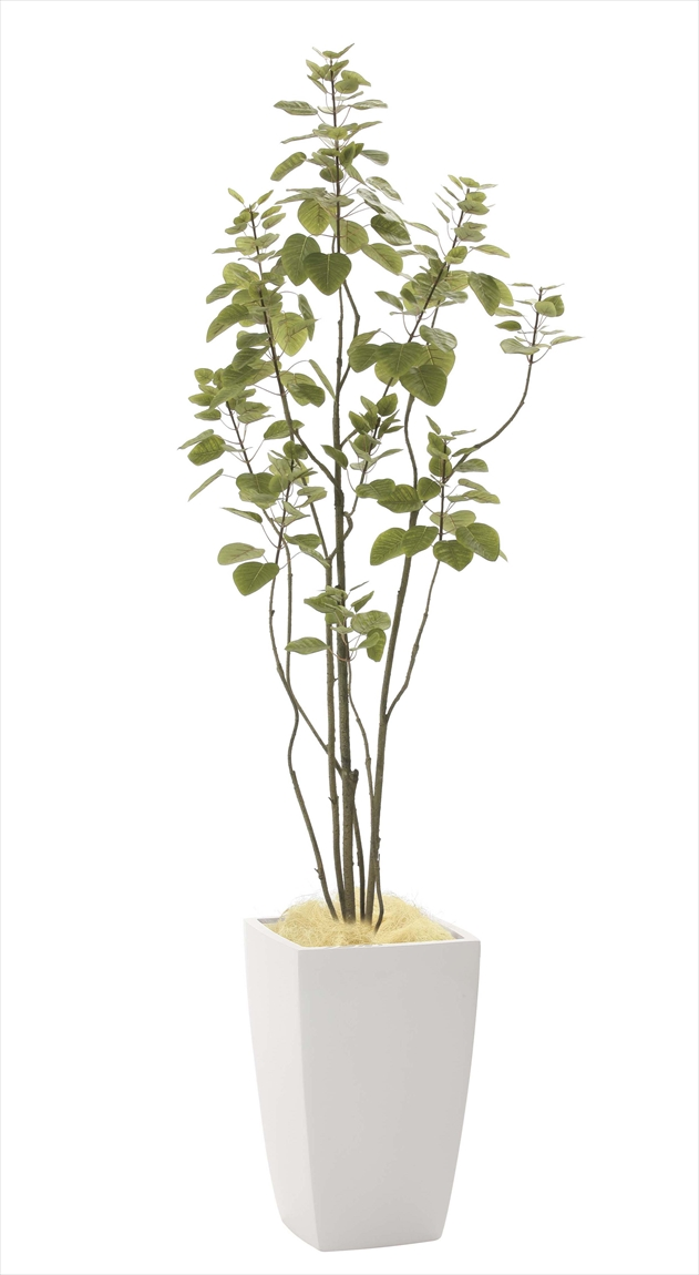 光触媒 光の楽園アーバンブランチツリー 高さ 1.8m【インテリアグリーン 大型 人工観葉植物】(944a450)