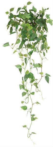 光触媒 光の楽園壁掛フィロ【インテリアグリーン 人工観葉植物】(acn062)
