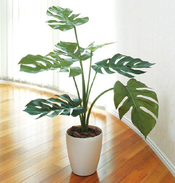 光触媒 光の楽園モンステラ75【インテリアグリーン 人工観葉植物】(acn077)
