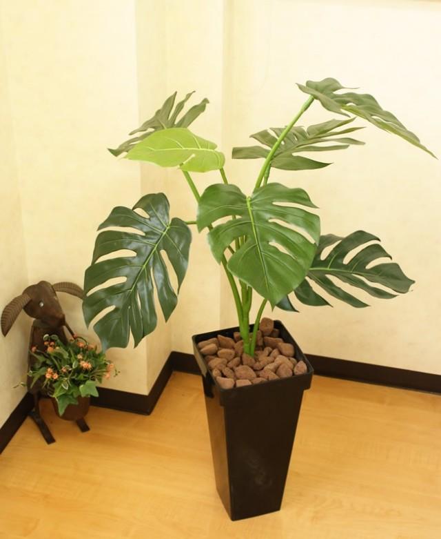 光触媒 光の楽園モンステラBK100【インテリアグリーン 人工観葉植物】(acn079)
