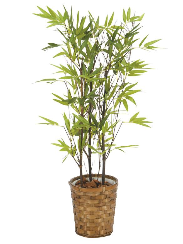 光触媒 光の楽園黒竹 75cm【インテリアグリーン 人工観葉植物】(acn082)