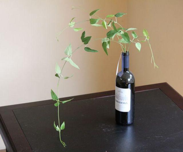 光触媒 光の楽園リキュウソウ※瓶はついていません 【インテリアグリーン 人工観葉植物】(acn096)