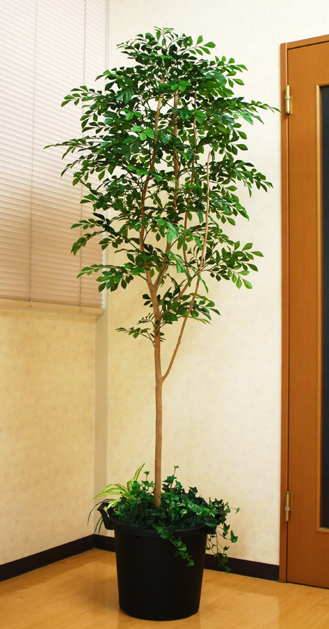 光触媒 光の楽園 トネリコ 高さ 1.8m【インテリアグリーン 大型 人工観葉植物】(acn181)