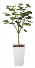 光触媒 光の楽園ウンベラータW1.8m【インテリアグリーン 人工観葉植物】(118e700)
