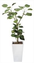光触媒 光の楽園アートウンベラータ1.8m【インテリアグリーン 人工観葉植物】(120e600)