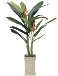 光触媒 光の楽園 ヘリコニア 高さ 2.0m 【インテリアグリーン 大型 人工観葉植物】 (123g870)